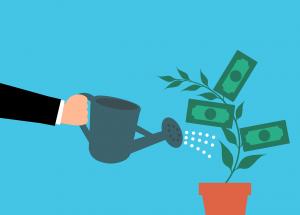 Money Cash Tree Watering Hand  - mohamed_hassan / Pixabay